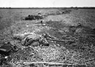 A soldier slain beside a hastily constructed rifle-pit at Muy-en-Multien (Marne).